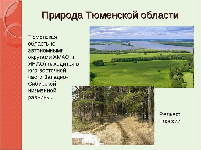 Природа Тюменской области Рельеф плоский Тюменская область (с автономными о...