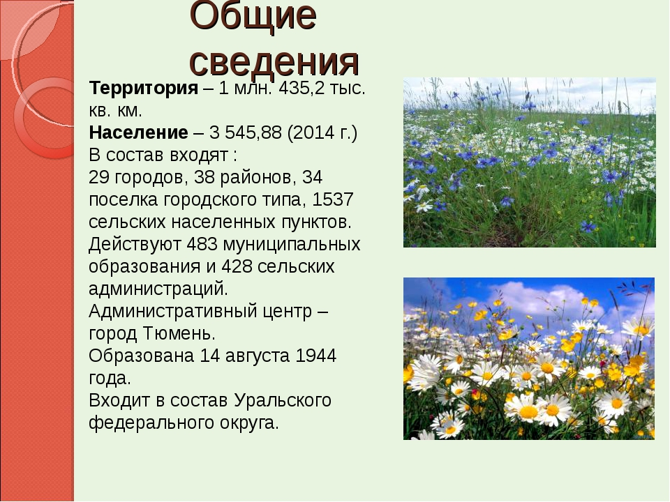 Общие сведения Территория – 1 млн. 435,2 тыс. кв. км. Население – 3 545,88 (2...