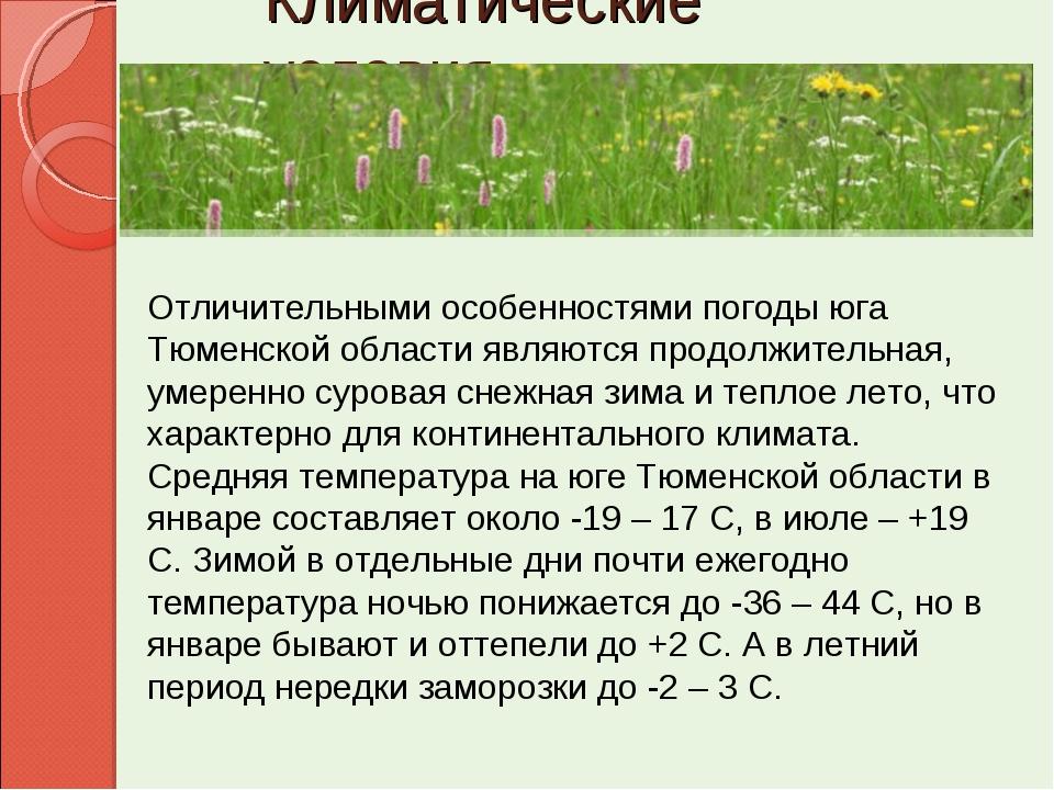 Климатические условия Отличительными особенностями погоды юга Тюменской облас...