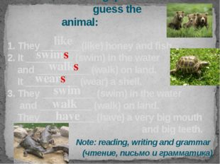 Let's read, fill in the gaps and guess the animal: 1. They _______ (like) hon