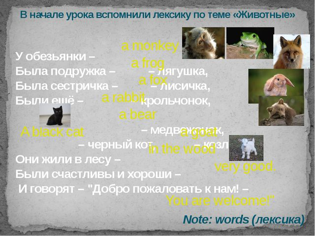 У обезьянки – Была подружка – – лягушка, Была сестричка – – лисичка, Были ещё...