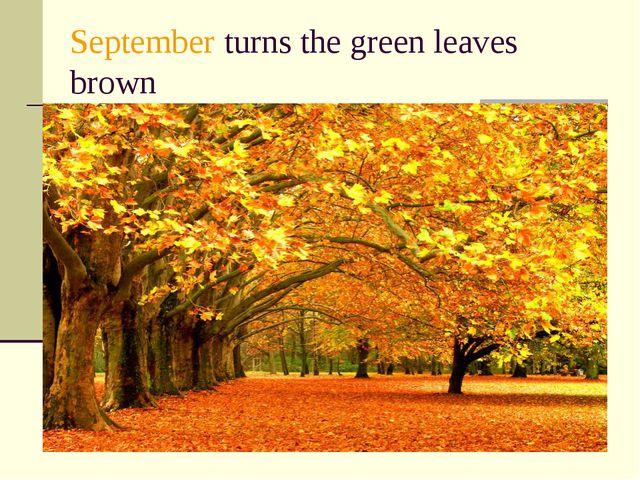 September turns the green leaves brown