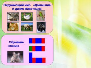 Окружающий мир «Домашние и дикие животные» Обучение чтению