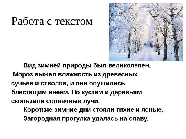 Работа с текстом Вид зимней природы был великолепен. Мороз выжал влажность из...
