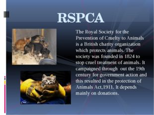 The Royal Society for the Prevention of Cruelty to Animals is a British chari