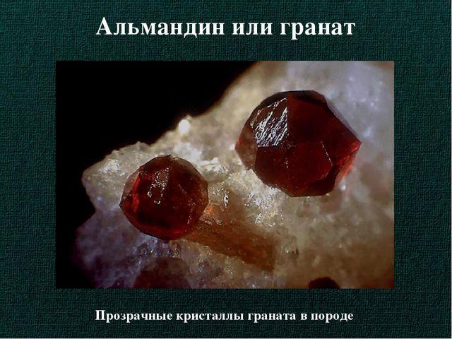 Альмандин или гранат Прозрачные кристаллы граната в породе