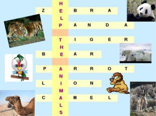 H  Z EBRA  L PANDA  TIGER H B EAR   P A