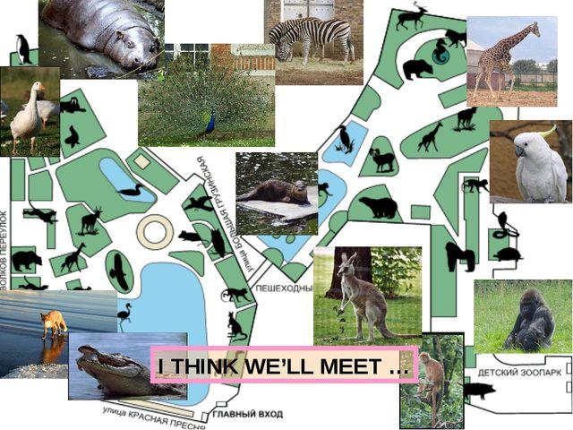I THINK WE'LL MEET …