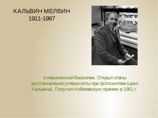КАЛЬВИН МЕЛВИН 1911-1997 Американский биохимик. Открыл этапы восстановления у