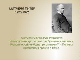 МИТЧЕЛЛ ПИТЕР 1920-1992 Английский биохимик. Разработал хемиосмотическую теор