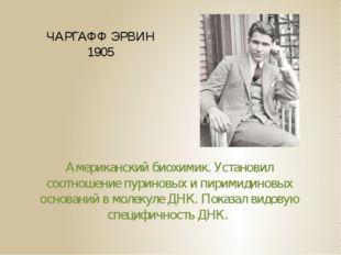 ЧАРГАФФ ЭРВИН 1905 Американский биохимик. Установил соотношение пуриновых и п