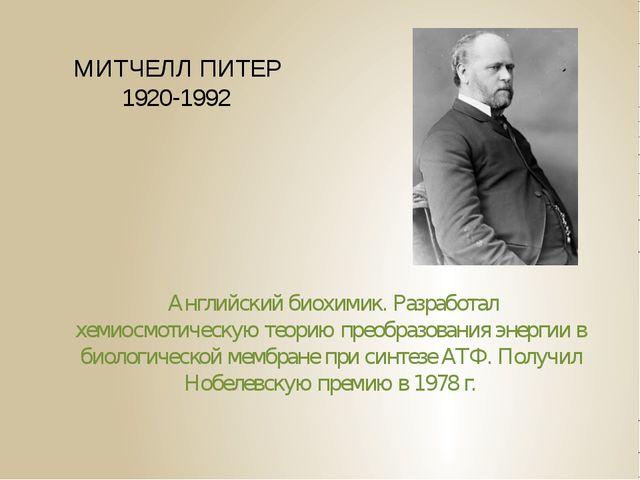 МИТЧЕЛЛ ПИТЕР 1920-1992 Английский биохимик. Разработал хемиосмотическую теор...