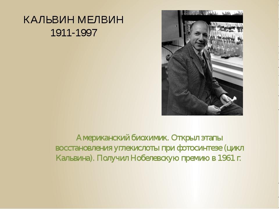 КАЛЬВИН МЕЛВИН 1911-1997 Американский биохимик. Открыл этапы восстановления у...