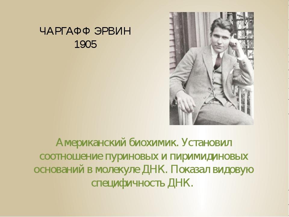 ЧАРГАФФ ЭРВИН 1905 Американский биохимик. Установил соотношение пуриновых и п...