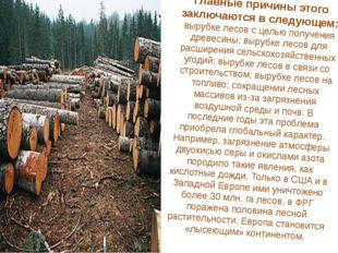 Главные причины этого заключаются в следующем: вырубке лесов с целью получени