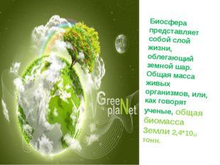 Биосфера представляет собой слой жизни, облегающий земной шар. Общая масса жи