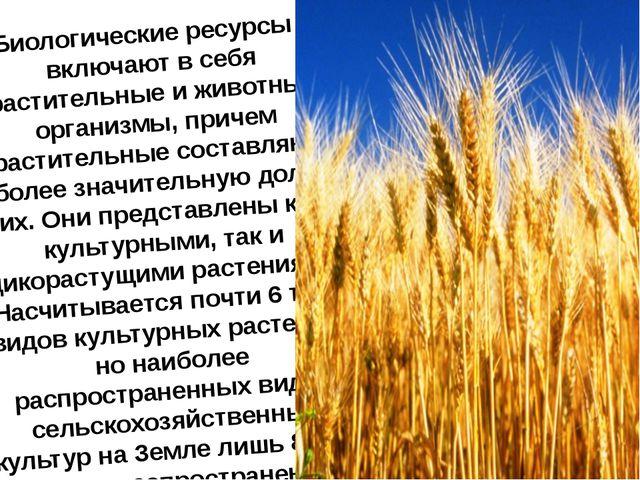 Биологические ресурсы - включают в себя растительные и животные организмы, пр...