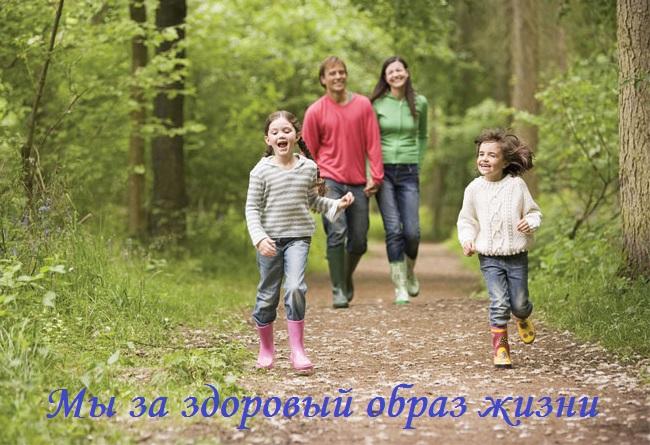 Coillte-Walks-Image.jpg