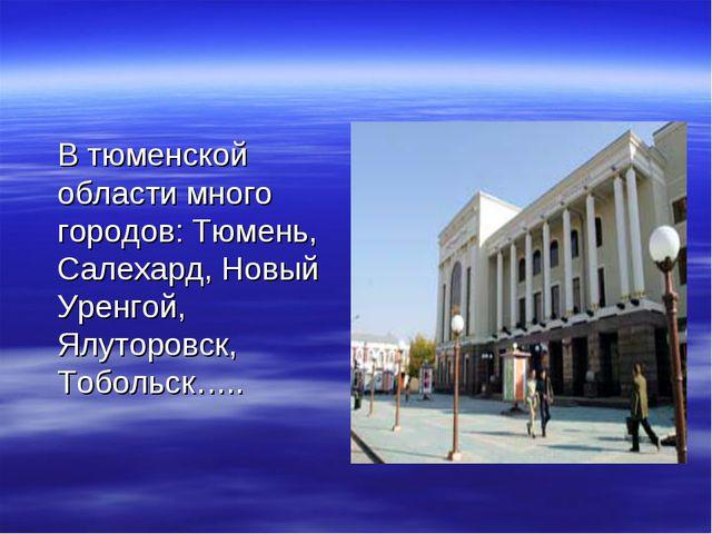 В тюменской области много городов: Тюмень, Салехард, Новый Уренгой, Ялуторов...