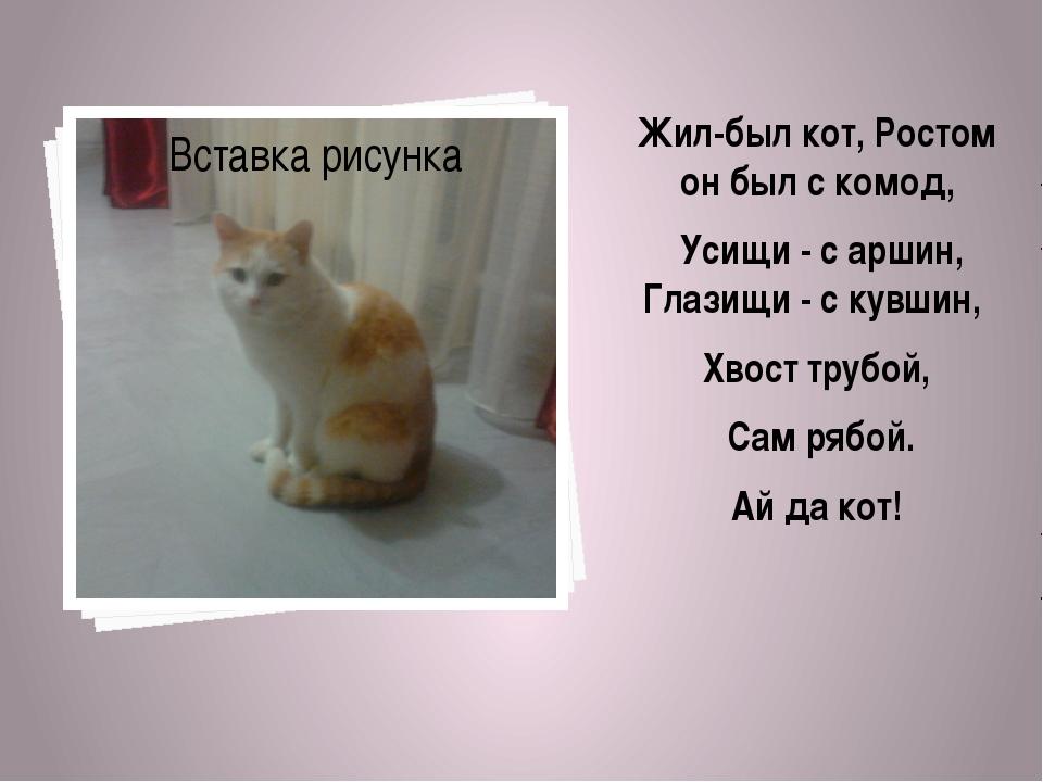 Жил-был кот, Ростом он был с комод, Усищи - с аршин, Глазищи - с кувшин, Хво...