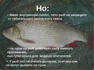 Но: Имея внутренний скелет, тело рыб не защищено от губительного солнечного с