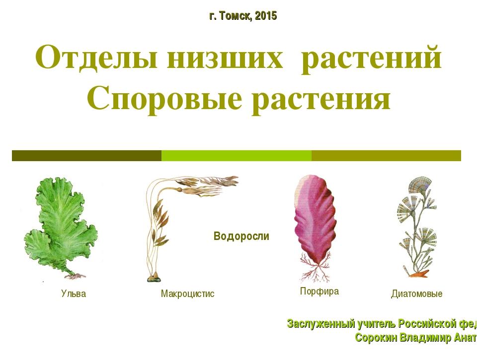 Отделы низших растений Споровые растения г. Томск, 2015 Заслуженный учитель Р...