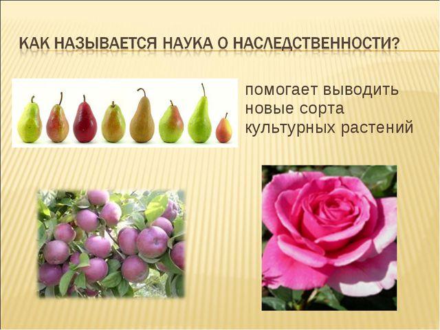 помогает выводить новые сорта культурных растений