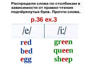 p.36 ex.3 red bed egg green queen sheep