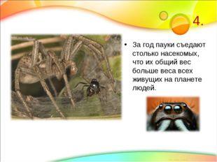4. За год пауки съедают столько насекомых, что их общий вес больше веса всех