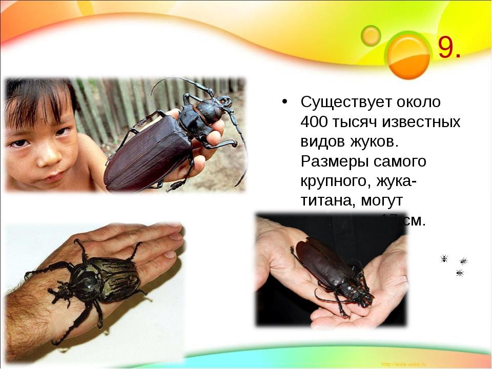 9. Существует около 400 тысяч известных видов жуков. Размеры самого крупного,...
