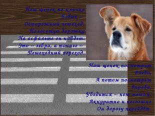 Наш щенок по кличке Бобик – Осторожный пешеход. Полосатую дорожку На асфальте