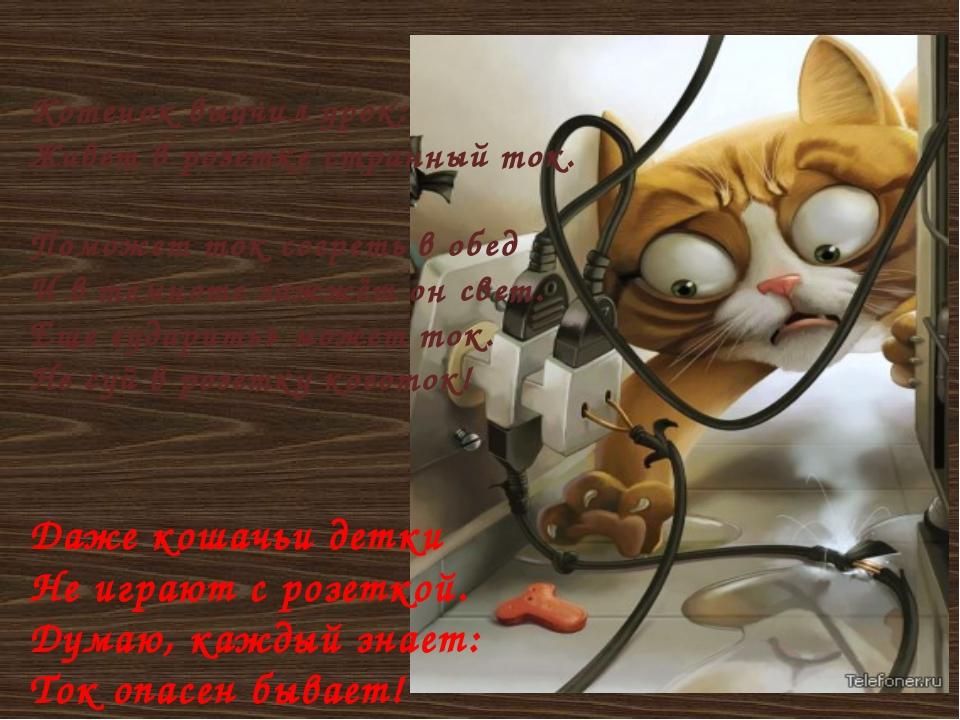 Котенок выучил урок: Живет в розетке странный ток. Поможет ток согреть в обе...