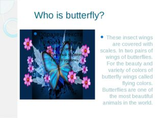 Who is butterfly? These insect wings are covered with scales. In two pairs o
