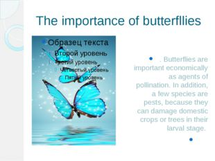 The importance of butterfllies . Butterflies are important economically as ag