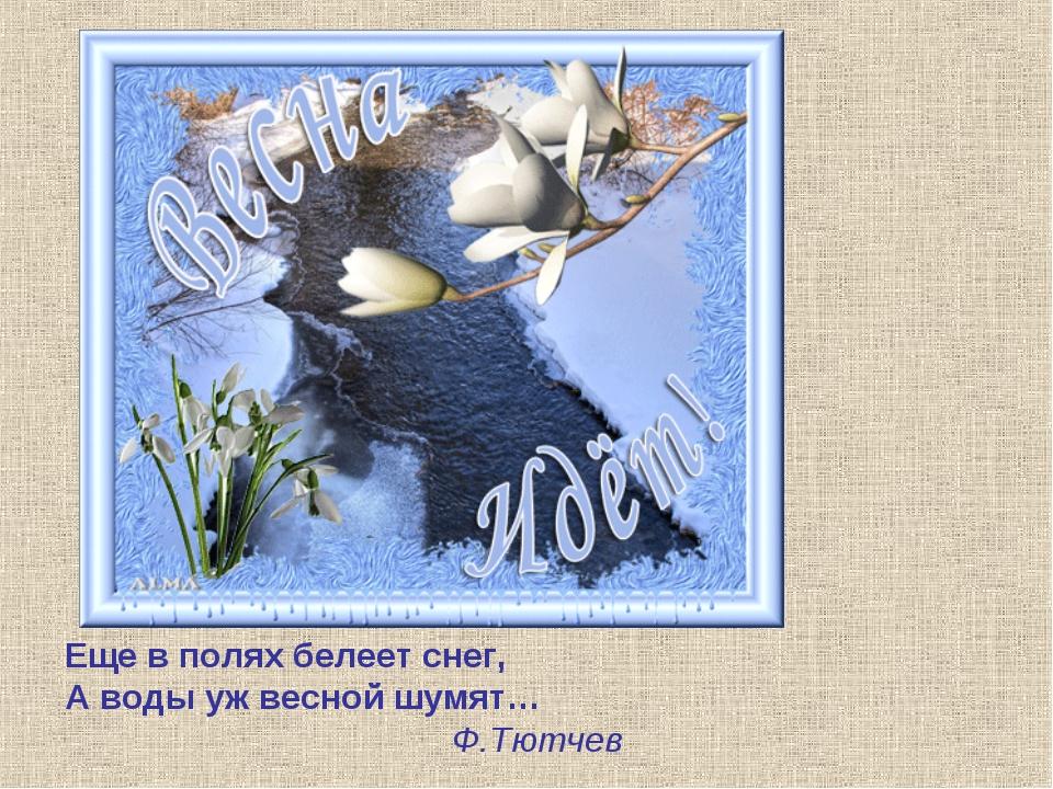 Еще в полях белеет снег, А воды уж весной шумят… Ф.Тютчев