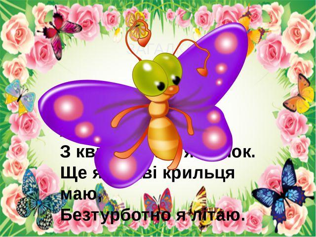 ЗАГАДКА В мене довгий хоботок, З квіт збираю я пилок. Ще яскраві крильця ма...