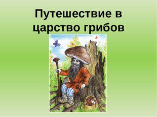 Путешествие в царство грибов