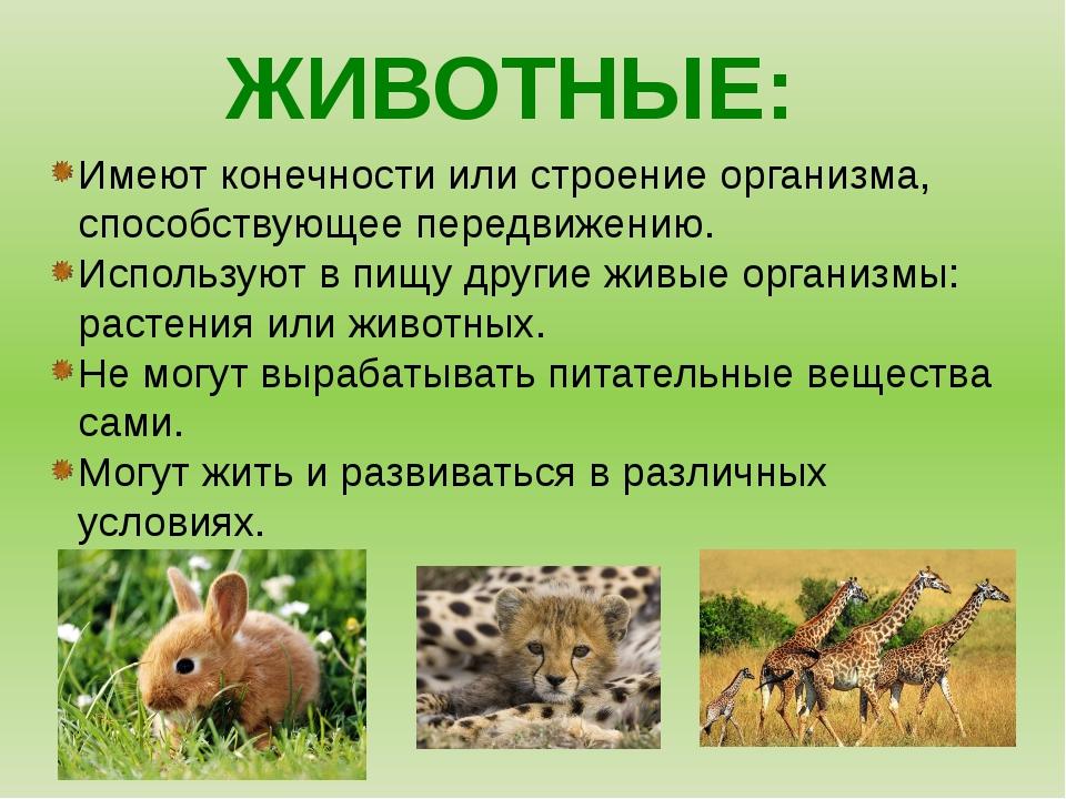 ЖИВОТНЫЕ: Имеют конечности или строение организма, способствующее передвижени...