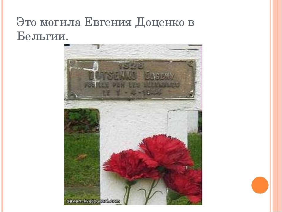 Это могила Евгения Доценко в Бельгии.