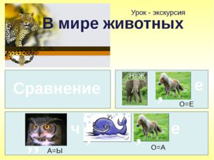 Урок - экскурсия В мире животных Сравнение Н=Ж е , О=Е , , А=Ы ч , , О=А е