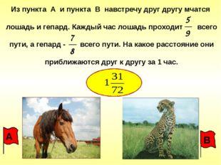 Из пункта А и пункта В навстречу друг другу мчатся лошадь и гепард. Каждый ча