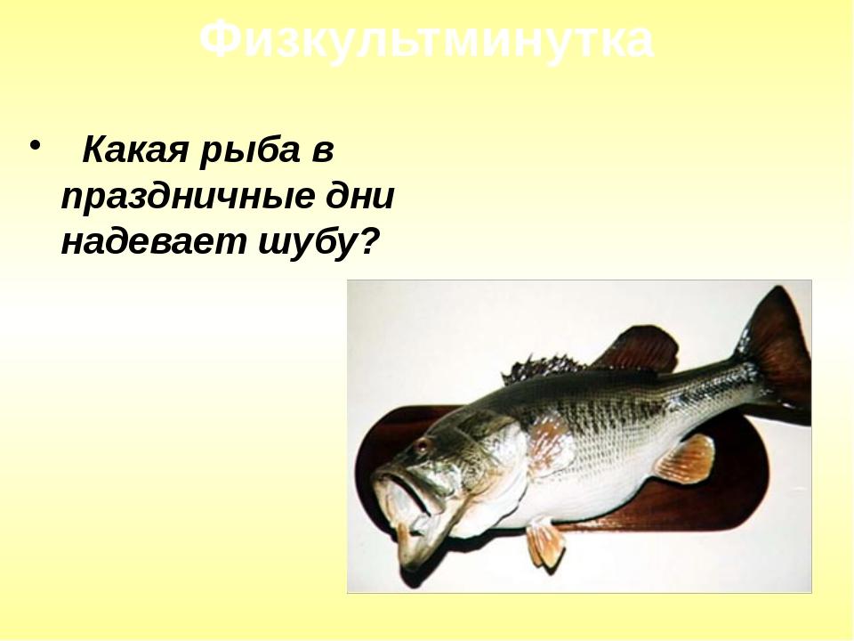 Какая рыба в праздничные дни надевает шубу? Физкультминутка
