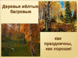Деревья жёлтые, багровые как праздничны, как хороши!