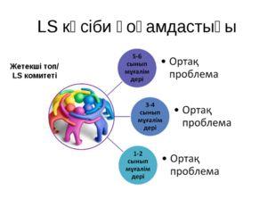 LS кәсіби қоғамдастығы Жетекші топ/ LS комитеті