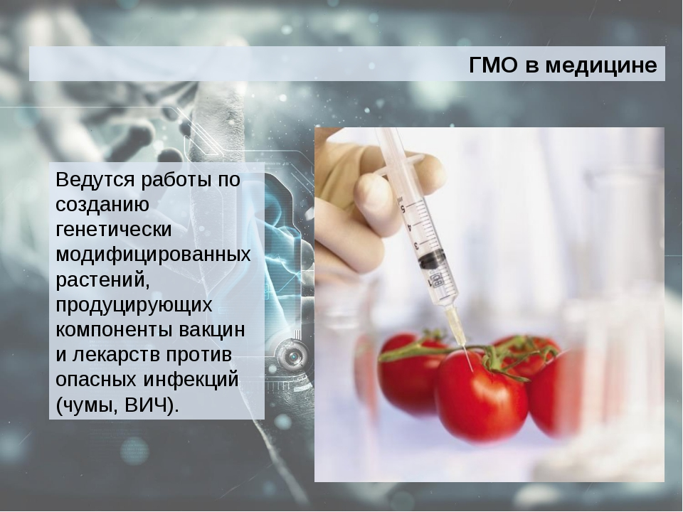 Ведутся работы по созданию генетически модифицированных растений, продуцирующ...
