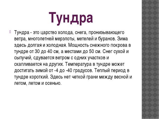 Тундра Тундра - это царство холода, снега, пронизывающего ветра, многолетней...
