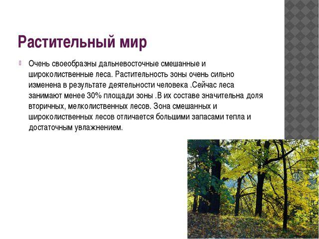 Растительный мир Очень своеобразны дальневосточные смешанные и широколиственн...