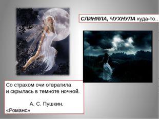 Со страхом очи отвратила и скрылась в темноте ночной. А. С. Пушкин. «Романс»