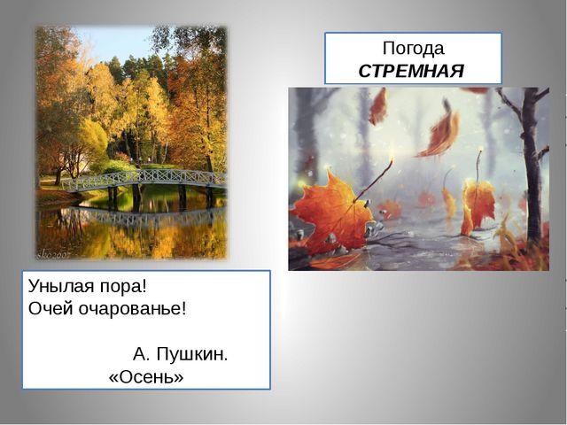Унылая пора! Очей очарованье! А. Пушкин. «Осень» Погода СТРЕМНАЯ