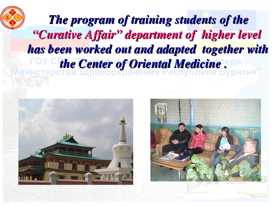 "The program of training students of the ""Curative Affair"" department of highe..."